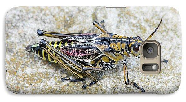 The Hopper Grasshopper Art Galaxy S7 Case by Reid Callaway