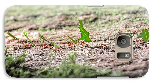 The Leaf Parade  Galaxy S7 Case by Betsy Knapp