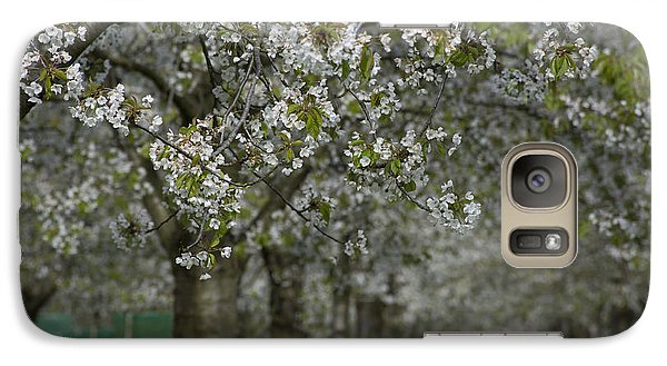 Galaxy Case featuring the photograph The Life Awakes 10 by Bruno Santoro