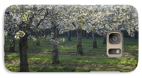 Galaxy Case featuring the photograph The Life Awakes 5 by Bruno Santoro