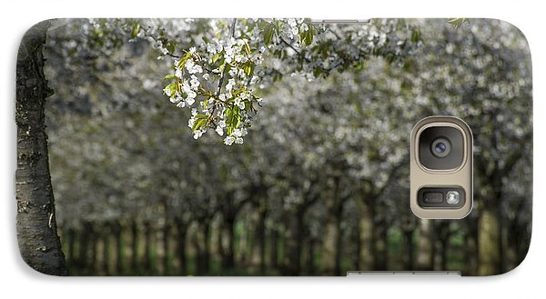 Galaxy Case featuring the photograph The Life Awakes by Bruno Santoro