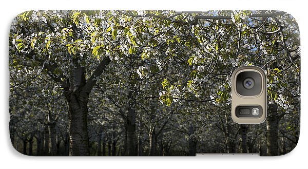 Galaxy Case featuring the photograph The Life Awakes4 by Bruno Santoro