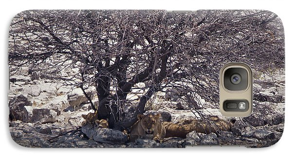 Galaxy Case featuring the photograph The Lion Family by Ernie Echols
