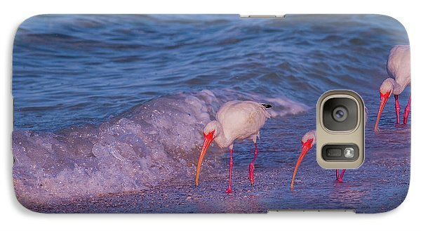 Ibis Galaxy S7 Case - The Locals by Betsy Knapp
