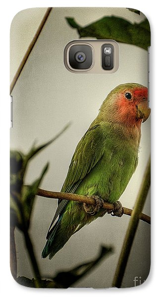 The Lovebird  Galaxy Case by Saija  Lehtonen
