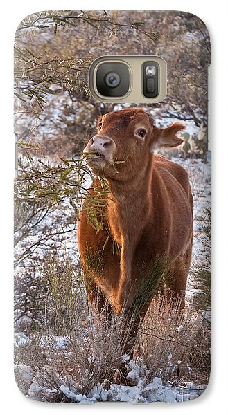 Galaxy Case featuring the photograph The New Years Cow by Donna Greene