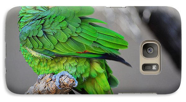 Galaxy Case featuring the photograph The Parrot by Donna Greene