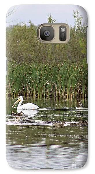 Galaxy Case featuring the photograph The Pelican And The Ducklings by Alyce Taylor