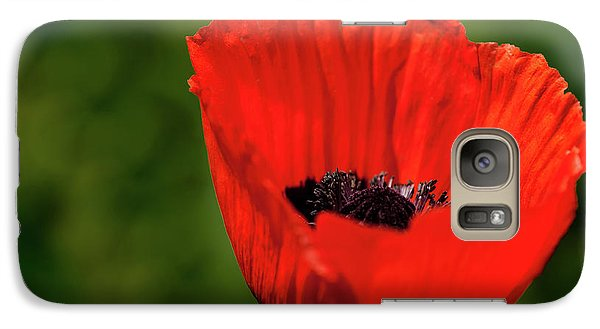 Galaxy Case featuring the photograph The Poppy Next Door by Onyonet  Photo Studios