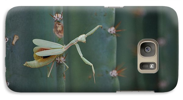 Galaxy Case featuring the photograph The Praying Mantis by Donna Greene