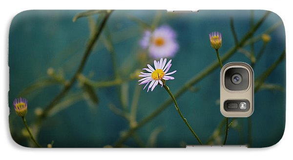 Galaxy Case featuring the photograph The Quiet Aster by Douglas MooreZart