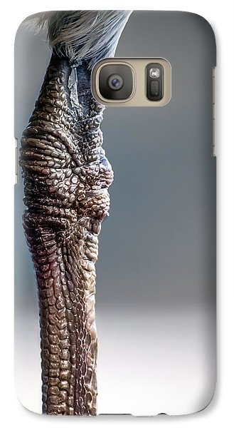 The Seagulls Knee  Galaxy S7 Case
