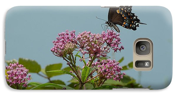 Galaxy Case featuring the photograph The Spicebush Swallowtail Of Prettyboy Reservoir by Donald C Morgan