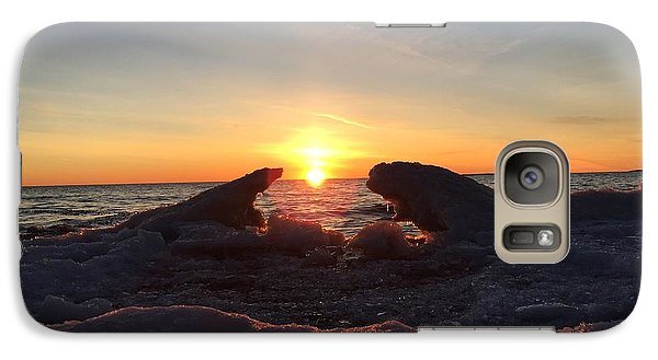 Galaxy Case featuring the photograph The Walrus And The Bear by Paula Brown