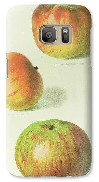 Three Apples Galaxy Case by English School