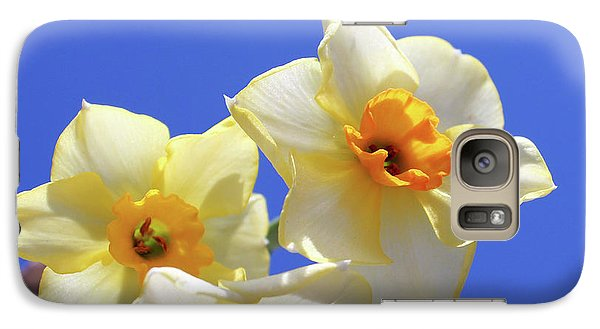 Galaxy Case featuring the photograph Three Daffodils by Judy Vincent