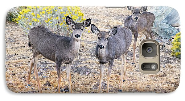 Galaxy Case featuring the photograph Three Mule Deer In High Desert by Frank Wilson