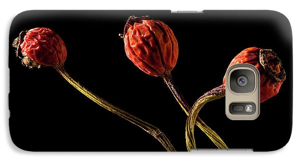 Three Rose Hips Galaxy S7 Case by  Onyonet  Photo Studios