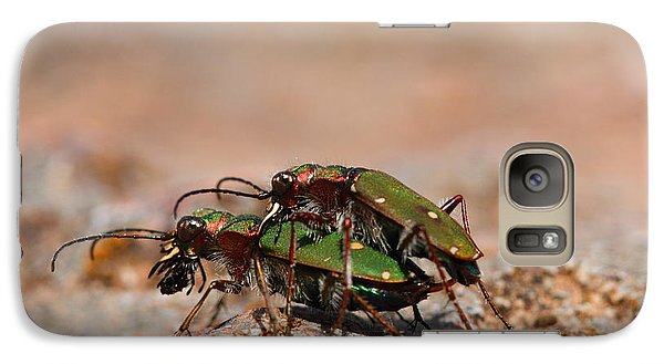 Galaxy Case featuring the photograph Tiger Beetle by Richard Patmore