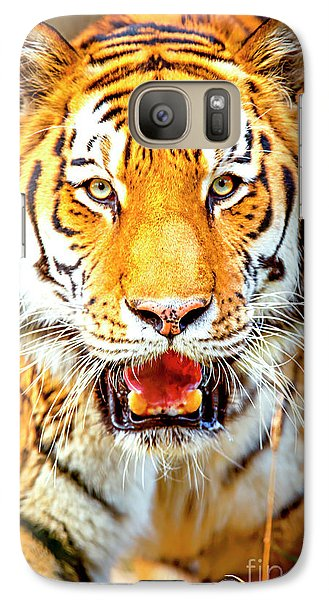 Tiger On The Hunt Galaxy Case by David Millenheft