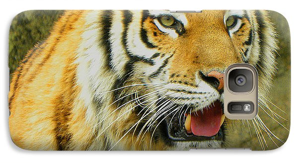 Galaxy Case featuring the photograph Tiger Stare by Sandi OReilly