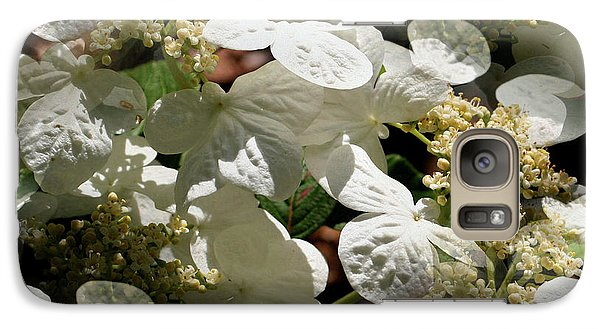 Galaxy Case featuring the photograph Tiled White Lace Cap Hydrangeas by Smilin Eyes  Treasures