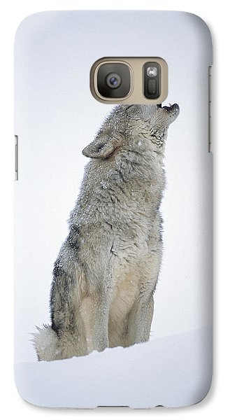 Timber Wolf Portrait Howling In Snow Galaxy S7 Case