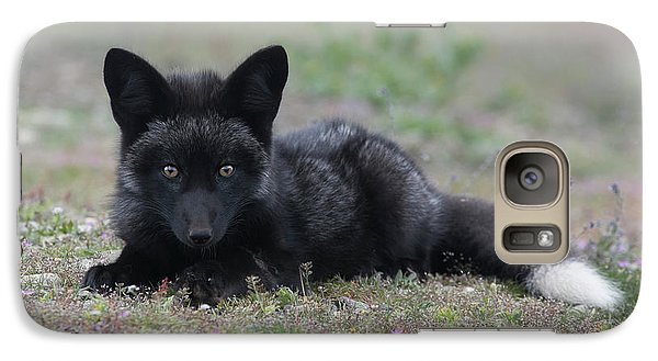 Galaxy Case featuring the photograph Here's Looking At You by Elvira Butler