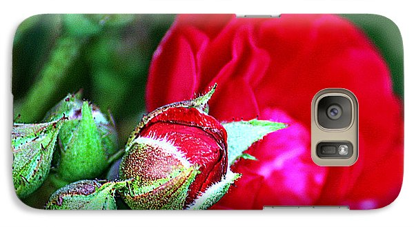 Galaxy Case featuring the photograph Tiny Red Rosebuds by KayeCee Spain