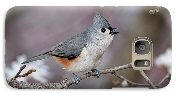 Galaxy Case featuring the photograph Titmouse Song - D010023 by Daniel Dempster