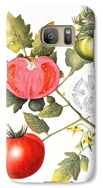 Tomatoes Galaxy S7 Case by Margaret Ann Eden