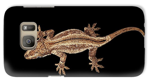 Top View Of Gargoyle Gecko, Rhacodactylus Auriculatus Staring Isolated On Black Background. Native T Galaxy S7 Case by Sergey Taran