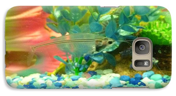 Galaxy Case featuring the photograph Transparent Catfish by Barbara Yearty