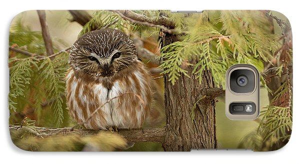 Galaxy Case featuring the photograph Treasures Of The Forest by Everet Regal