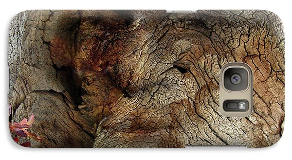 Galaxy Case featuring the photograph Tree Memories # 34 by Ed Hall