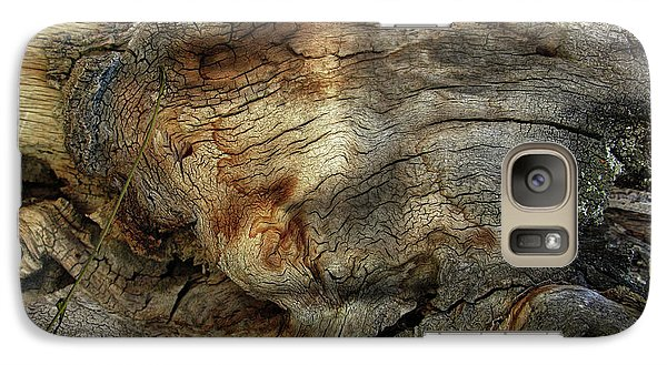 Galaxy Case featuring the photograph Tree Memories # 36 by Ed Hall