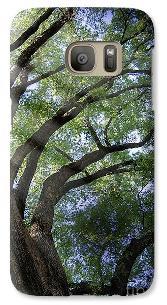 Galaxy Case featuring the photograph Tree Rays by Brian Jones