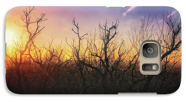 Galaxy Case featuring the photograph Treetop Silhouette - Sunset At Lapham Peak #1 by Jennifer Rondinelli Reilly - Fine Art Photography