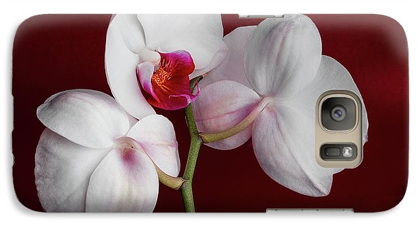 Orchid Galaxy S7 Case - Trio Of Orchids by Tom Mc Nemar