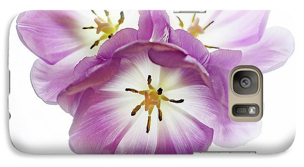 Galaxy Case featuring the photograph Trio Squared by Rebecca Cozart
