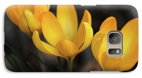 Galaxy Case featuring the photograph Triplets by Connie Handscomb