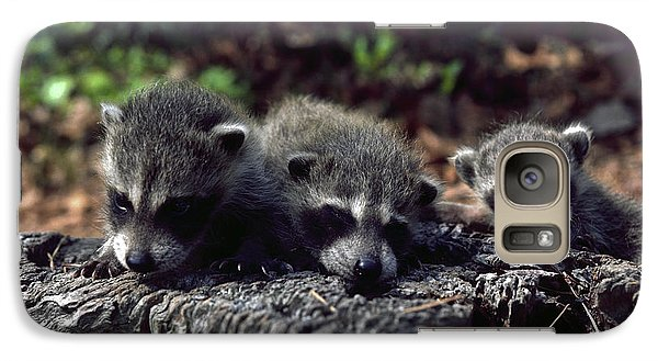 Galaxy Case featuring the photograph Triplets by Sally Weigand