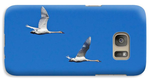 Galaxy Case featuring the photograph Trumpeter Swan 1727 by Michael Peychich