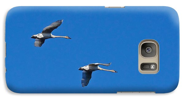Galaxy Case featuring the photograph Trumpeter Swans 1726 by Michael Peychich