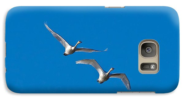 Galaxy Case featuring the photograph Trumpeter Swans 1735 by Michael Peychich