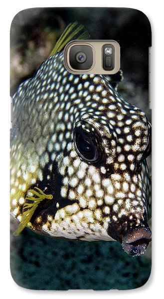 Galaxy Case featuring the photograph Trunkfish Portrait by Jean Noren