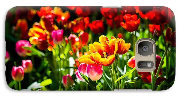 Galaxy Case featuring the photograph Tulip Flower Beauty by Alexander Senin