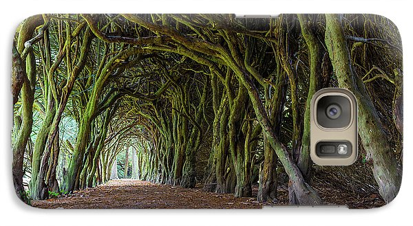 Galaxy Case featuring the photograph Tunnel Of Intertwined Yew Trees by Semmick Photo