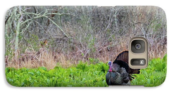 Galaxy Case featuring the photograph Turkey And Cabbage by Bill Wakeley