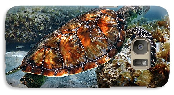 Galaxy Case featuring the photograph Turtle And Shark Swimming At Ocean Reef Park On Singer Island Florida by Justin Kelefas